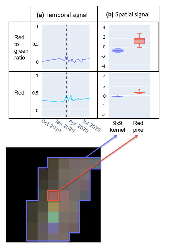 Spatial and temporal signals of a red truck pixel from M1 training data, here showing a stronger peak in the red to green band than the red band. The colour ratio bands also showed a stronger signal between truck and non-truck pixels within specific imaging dates.